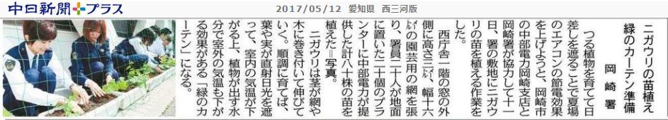 岡崎警察署がにがうりうえてみどりのカーテンに - ちゅうにち 2017.5.12