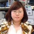 ショッピングモールのうたひめ半崎美子さん - NHK (10) 信藤敦子記者