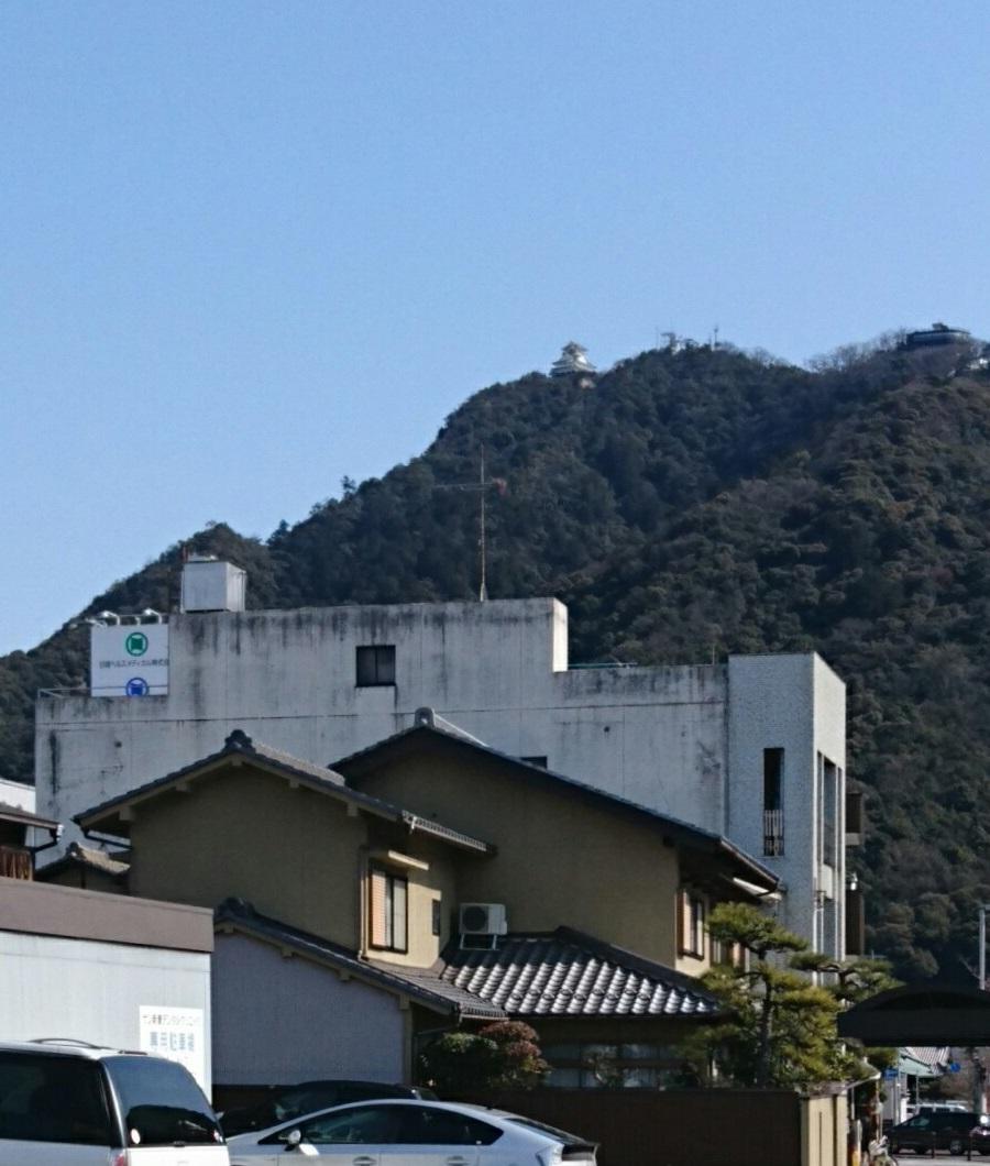 2018.2.19 岐阜 (144) ひがしむき 900-1060