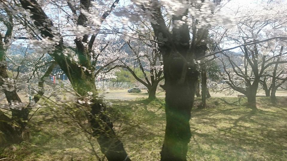 2018.3.28 大井川本線 (25) 千頭いきふつう - 大和田-家山間 960-540
