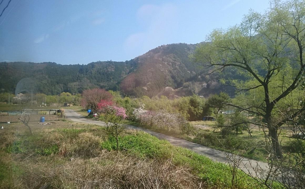 2018.3.28 大井川本線 (34) 千頭いきふつう - 抜里 1160-720