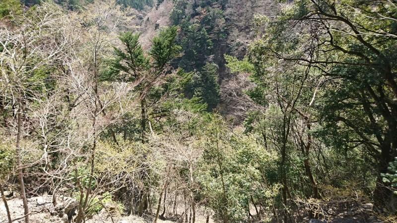 2018.3.28 井川線 (98) 井川いき列車 - 閑蔵-井川間 1280-720