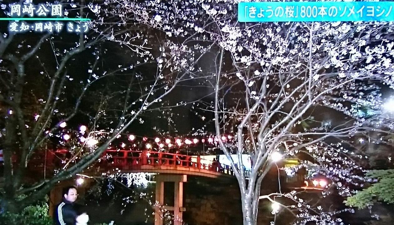 2019.4.1 テレビ朝日 - 岡崎公園 (2) 1260-720