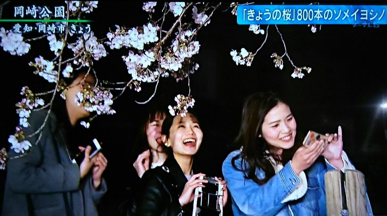 2019.4.1 テレビ朝日 - 岡崎公園 (4) 1290-720
