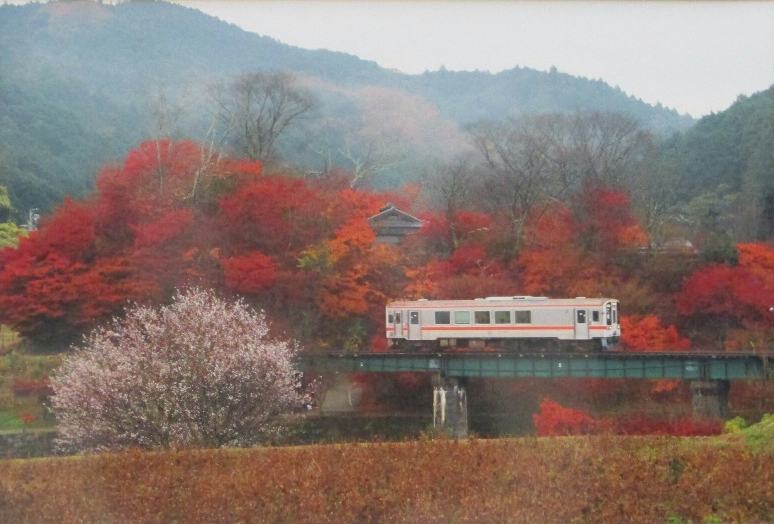2019.4.27 (7-1) 安祥フォトサークル写真展 - 晩秋のやまざと 1550-1050