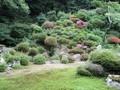 2019.6.8 (4) 華蔵寺 - にわ(きたむき) 2000-1500