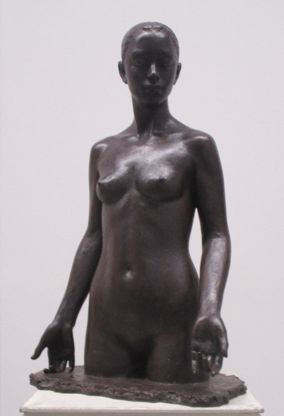 日展 (20-1) 島畑貢さん『青春の詩』 1160-1700
