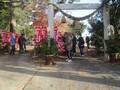 2020.12.31 古井神社 - 千本幟 (1) 1580-1180