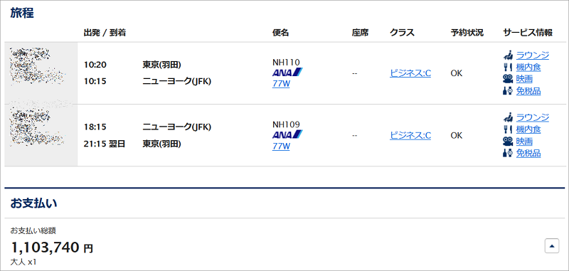 現金で購入する東京~ニューヨーク間往復