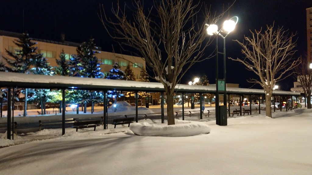 北広島駅外の雪景色