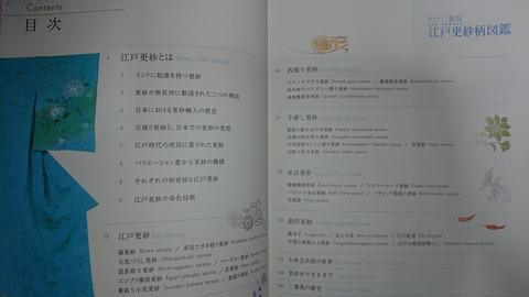 DSC_2363