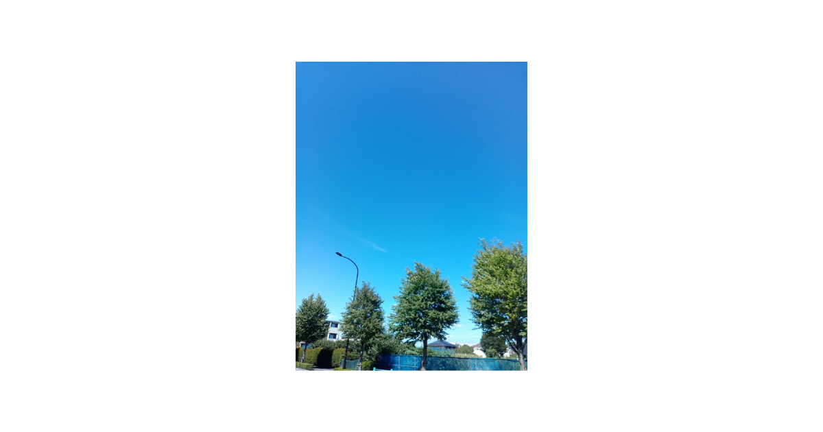 f:id:uribouwataru:20210827013847p:plain