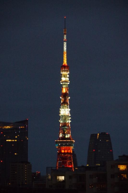 [2017年09月01日][東京タワー][ランドマークライト]