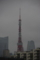 [東京タワー][台風接近][台風15号]