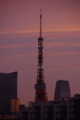 [2017年10月02日][東京タワー][夕焼け]