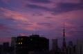 [2018年08月24日][東京タワー][夕焼け]