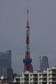 [2019年06月01日][東京タワー]