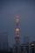 [2019年07月07日][東京タワー][ランドマークライト]