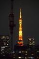 [2020年10月14日][PENTAX K-3][東京タワー][ランドマークライト]