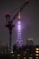 [2020年10月10日][PENTAX K-3][東京タワー][ダイヤモンドヴェール][世界メンタルヘルスデ]