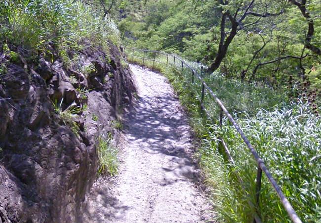 登山道中盤から土の道