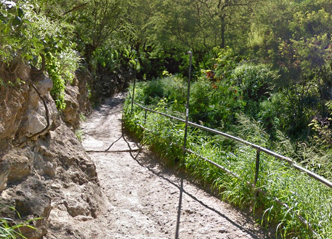 ゴロゴロした岩場のような道になってくる