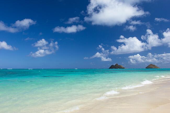 ハピタスだけでハワイにビジネスクラス旅行