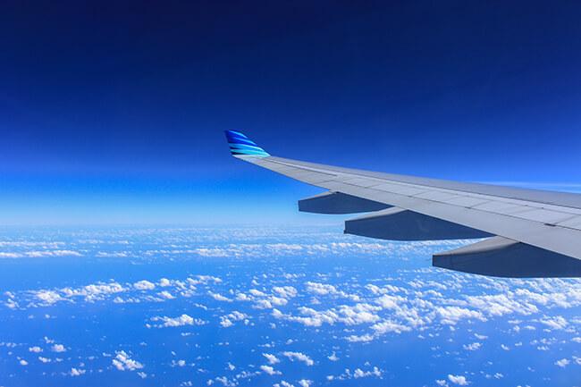 メトロポイントからanaマイルに交換して特典航空券で飛行機に乗る