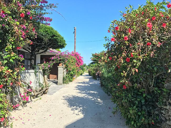 竹富島の路地