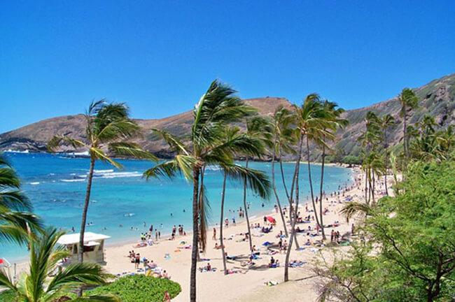 ハピタスだけでハワイ