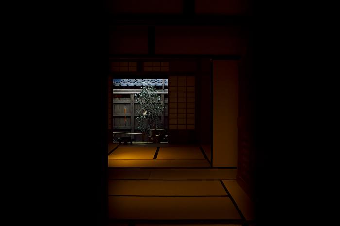 f:id:urotsukiki:20190310192946j:plain