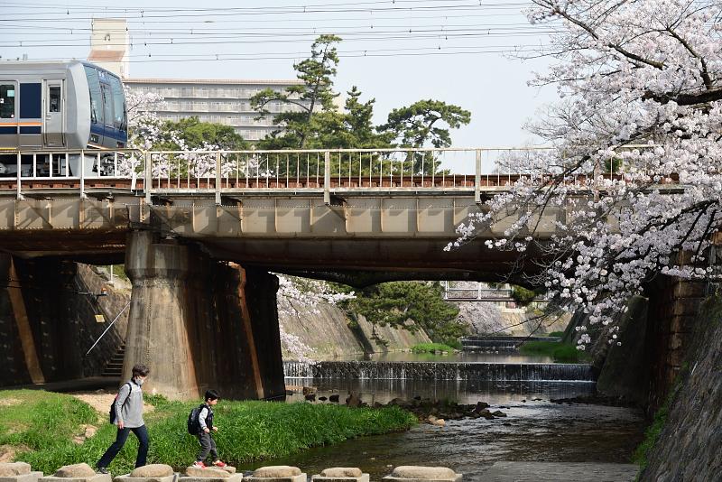f:id:urotsukiki:20210408173551j:plain