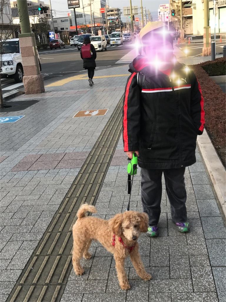 f:id:ururunokaze:20180228105805j:image