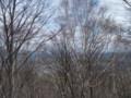 [札幌][藻岩山] 札幌中心部方面@山頂 残念な見晴らし