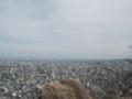 [札幌][円山] 札幌ドーム方面@山頂