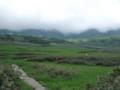 [雨竜][雨竜沼湿原] 湿原のようす その1