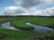 湿原のようす その2