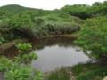 [夕張][夕張岳] ひょうたん沼