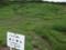 1400メートル湿原