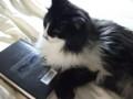 [猫] 読むにゃ