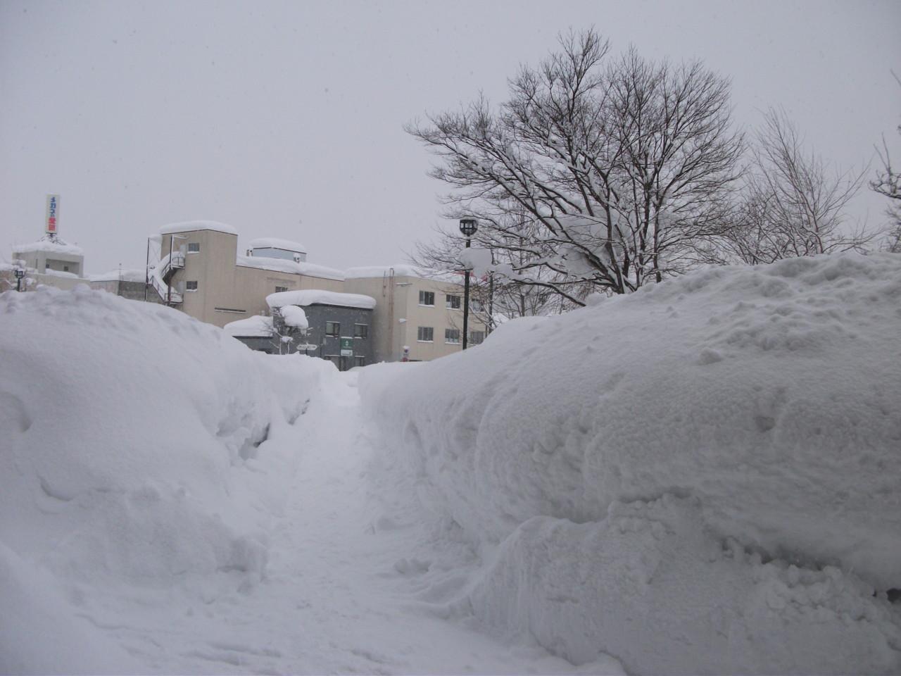 出口をはばむ雪の壁