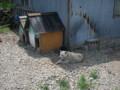 [島牧][温泉] モッタ海岸温泉 温泉犬