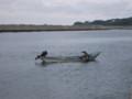 [奥尻] 漁をする漁師