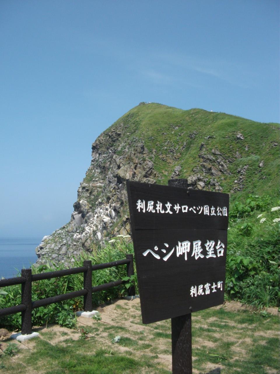 ペシ岬中腹 海鳥コロニー