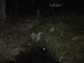 [利尻富士町][利尻山] 甘露泉水