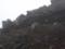 8合目山小屋 謎の野鳥(イワヒバリorカヤクグリ)その3