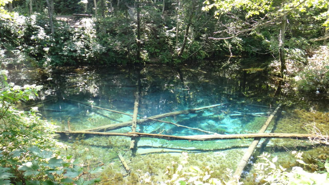神の子池 その2
