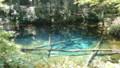 [清里] 神の子池 その2