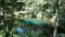 神の子池 その3