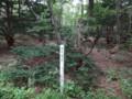 [羽幌][焼尻島] 奇木「鶴の木」